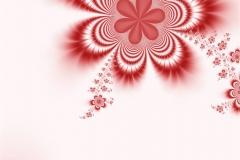 Çiçek 11
