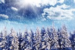 Kış 10
