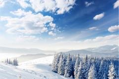 Kış 11