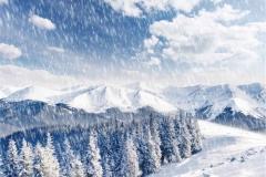 Kış 12