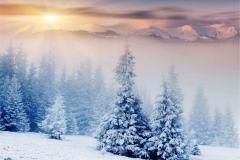 Kış 15