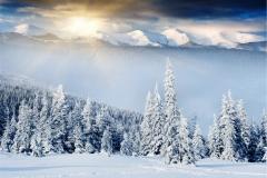 Kış 16