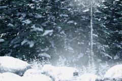 Kış 19