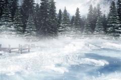 Kış 20