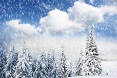 Kış 5