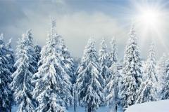 Kış 6