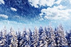 Kış 9